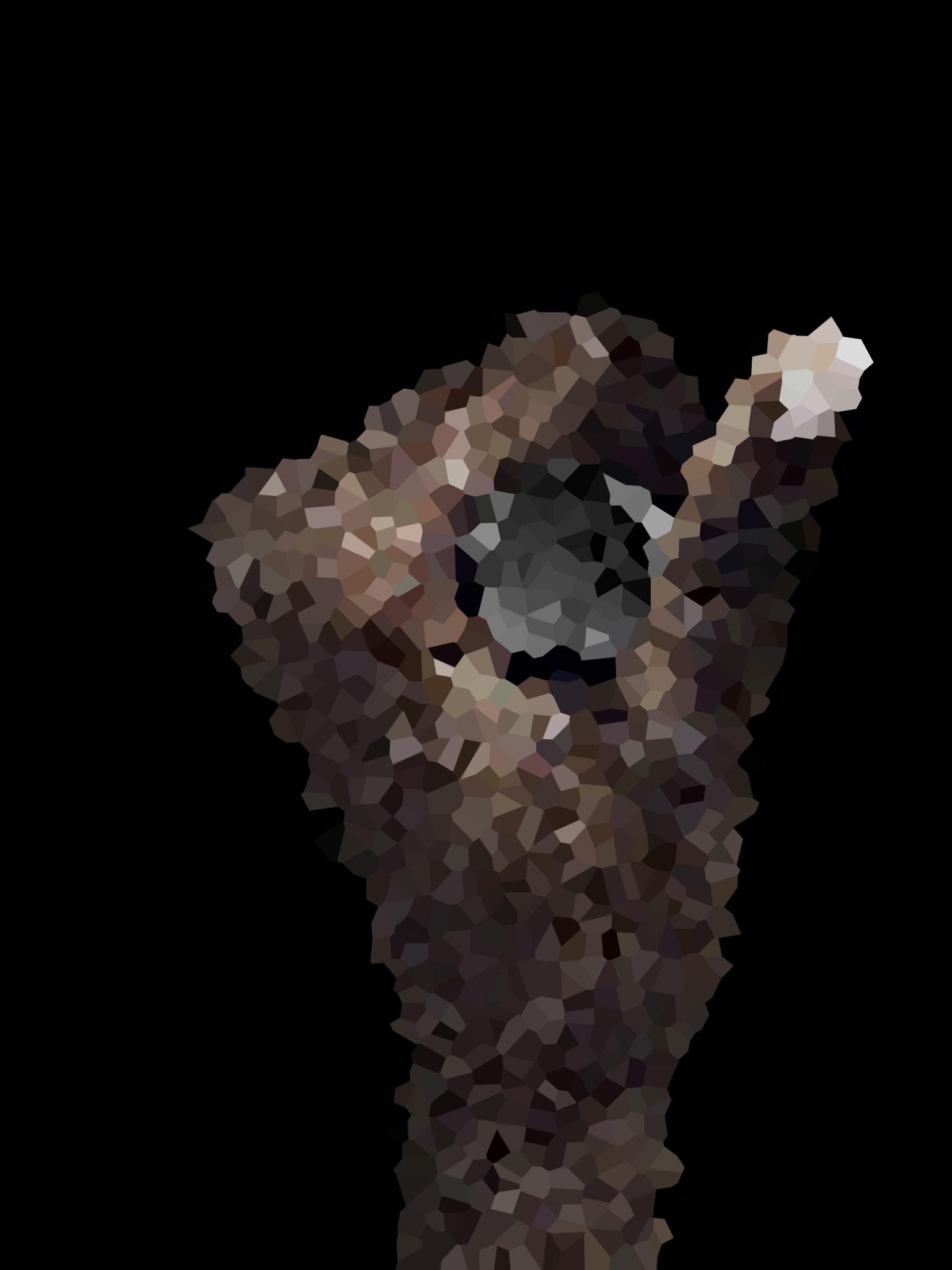 _1_vertical